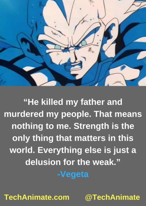 bbcc5583 31 Inspirational Vegeta Quotes (Will Give You Strength) | TechAnimate