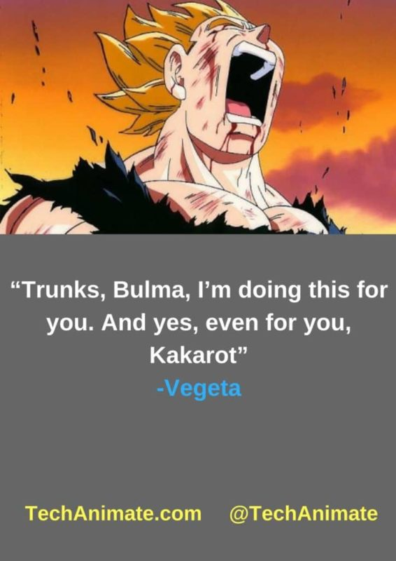 31 Inspirational Vegeta Quotes (Will Give You Strength